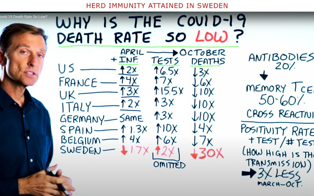 Dr Berg and Swedish Herd Immunity