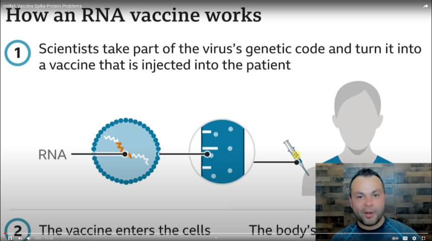 mRNA Vaccine Spike Protein Problems